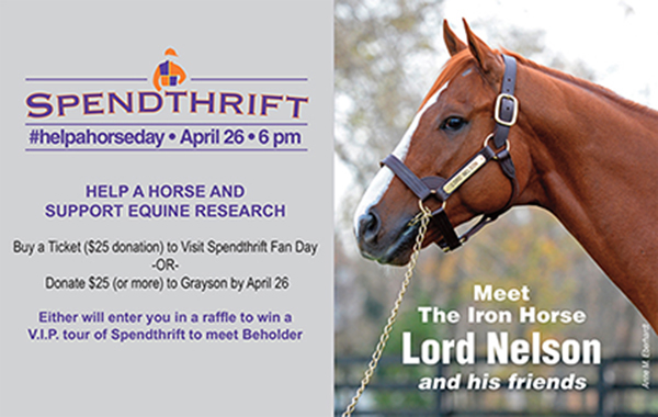 SPENDTHRIFT #HELPAHORSE